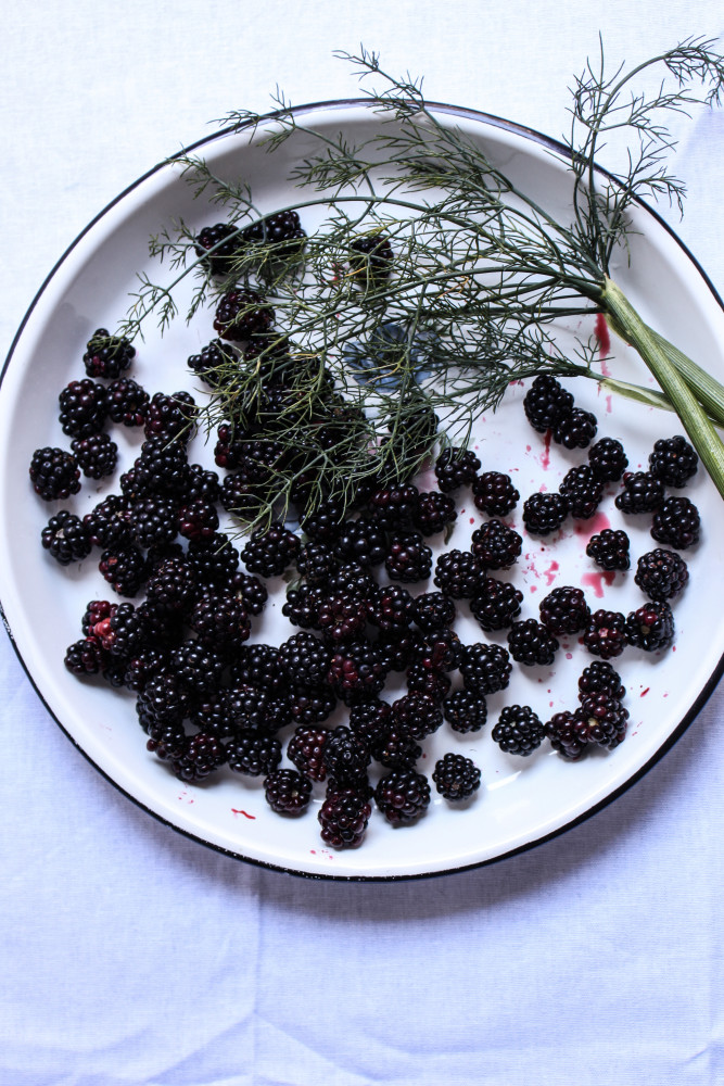 wild blackberry and fennel cake-1-2