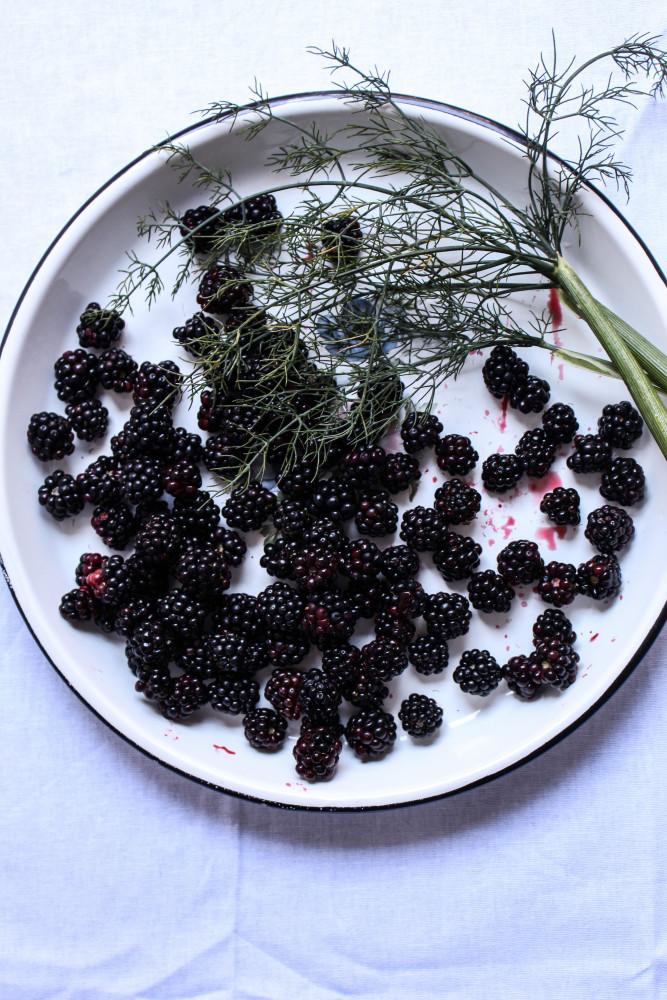 wild blackberry and fennel cake-1-2