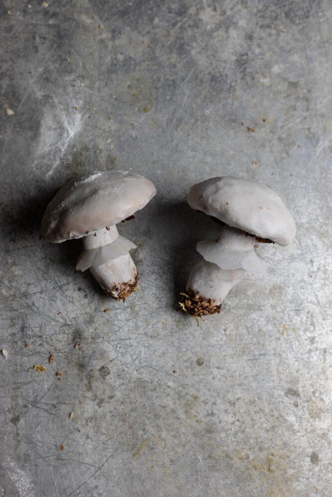 step 14 mushroom shaped gingerbread