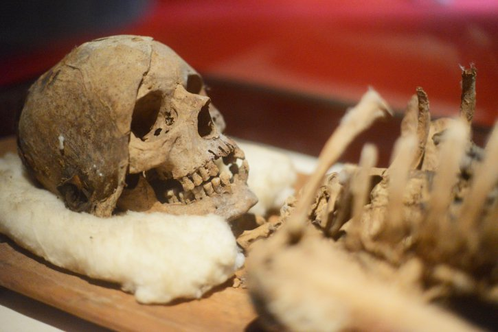 Top 10 Recent Archaeological discoveries That Shed Light On Our Past
