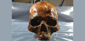 Human Skulls Mounted on Stakes Found at 8,000-Year-Old Burial Site in Sweden