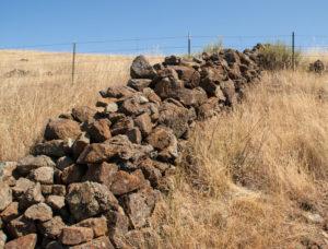 Berkeley Mystery Walls