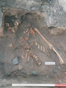 Archaeologists have discovered a 900-year-old murder victim during a dig at the Scottish Seabird Centre in East Lothian.