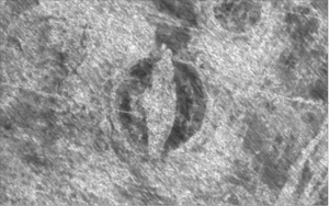 An image generated by ground-penetrating radar reveals the outlines of a Viking ship within a burial mound.