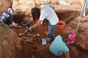 Archaeologists work on the site in Sicily.