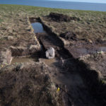 The possible bog iron roasting hearth can be seen beside the structure made of turf at Point Rosee.