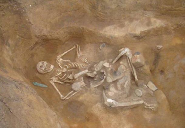 Giant skeleton nicknamed 'Goliath' found in Santa Mare, Romania