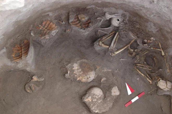 Turtle skeletons were found alongside human ones in the Kavusan Hoyuk burial.