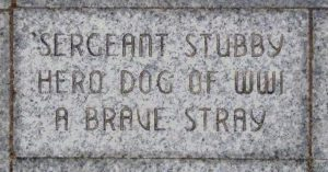 Sergeant Stubby's brick at the Liberty Memorial