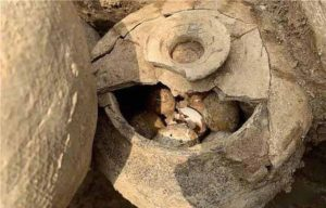 They were kept in a clay jar with a closed lid when experts found them in eastern China