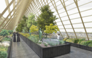 The proposal aims to respect the cathedral's original silhouette by matching the greenhouse's profile with the 13th-century timber roof that was destroyed in the fire. Its structure would be built from gold-coloured steel.