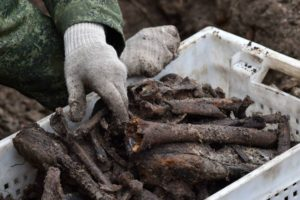 A box of human remains excavated at the site