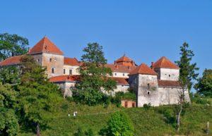 Svirz Castle