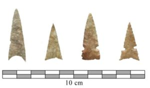 Protohistoric Wichita points found at Etzanoa.