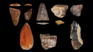 Stone artefacts unearthed in Idaho could have belonged to some of North America's first residents.