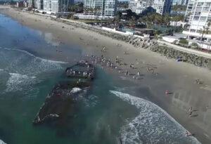 El Nino Storms Unearth 1930s 'Sin Ship' Wreckage in Coronado