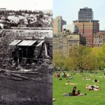 New York destroyed a village full of African-American landowners to create Central Park