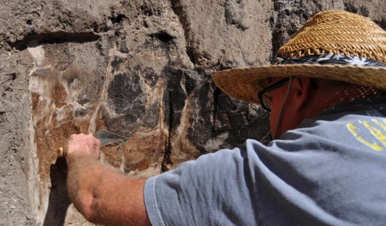 Archaeologists uncover 13,000-year-old Ancient Bison Bones at Florida Dig Site