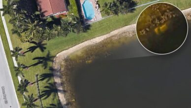 Florida Man Discovers Decades-Old Dead Body Using Google Earth