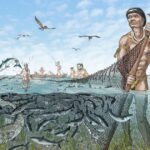 Native Americans in Ancient Florida Developed Pre-electricity Fish Storage