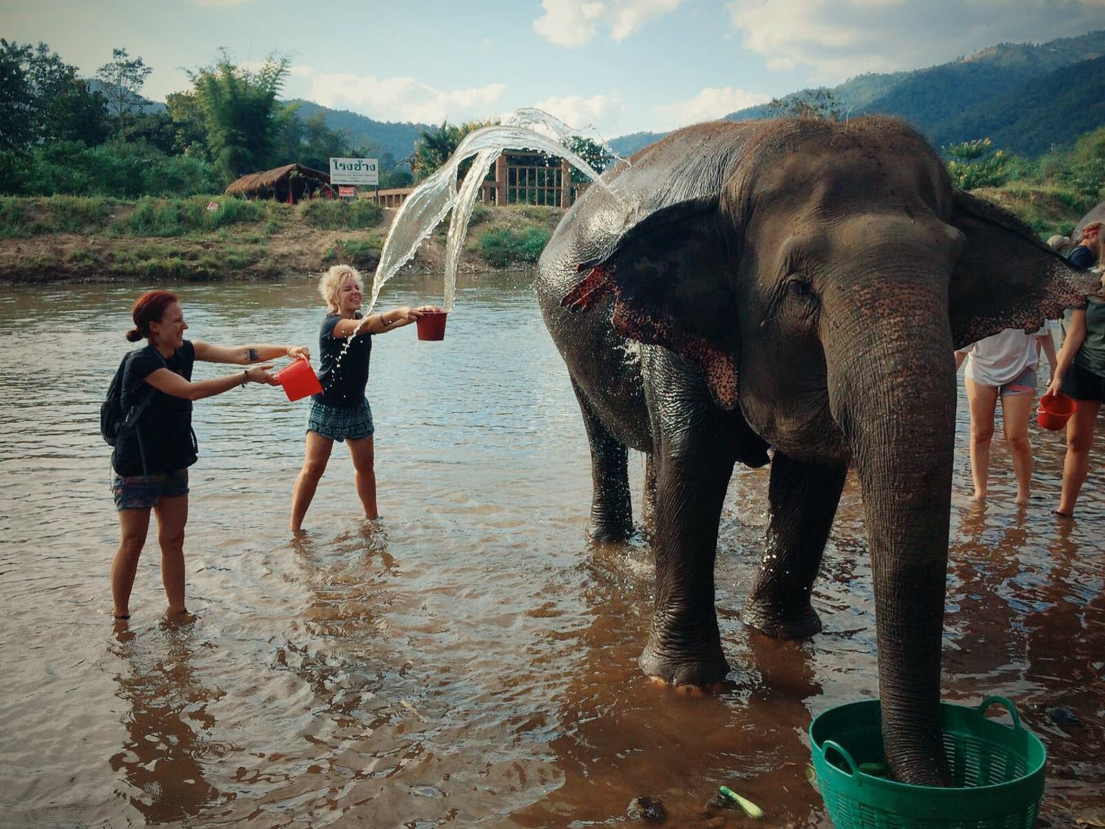 bathing with elephants thailand chiang mai elephant sanctuary