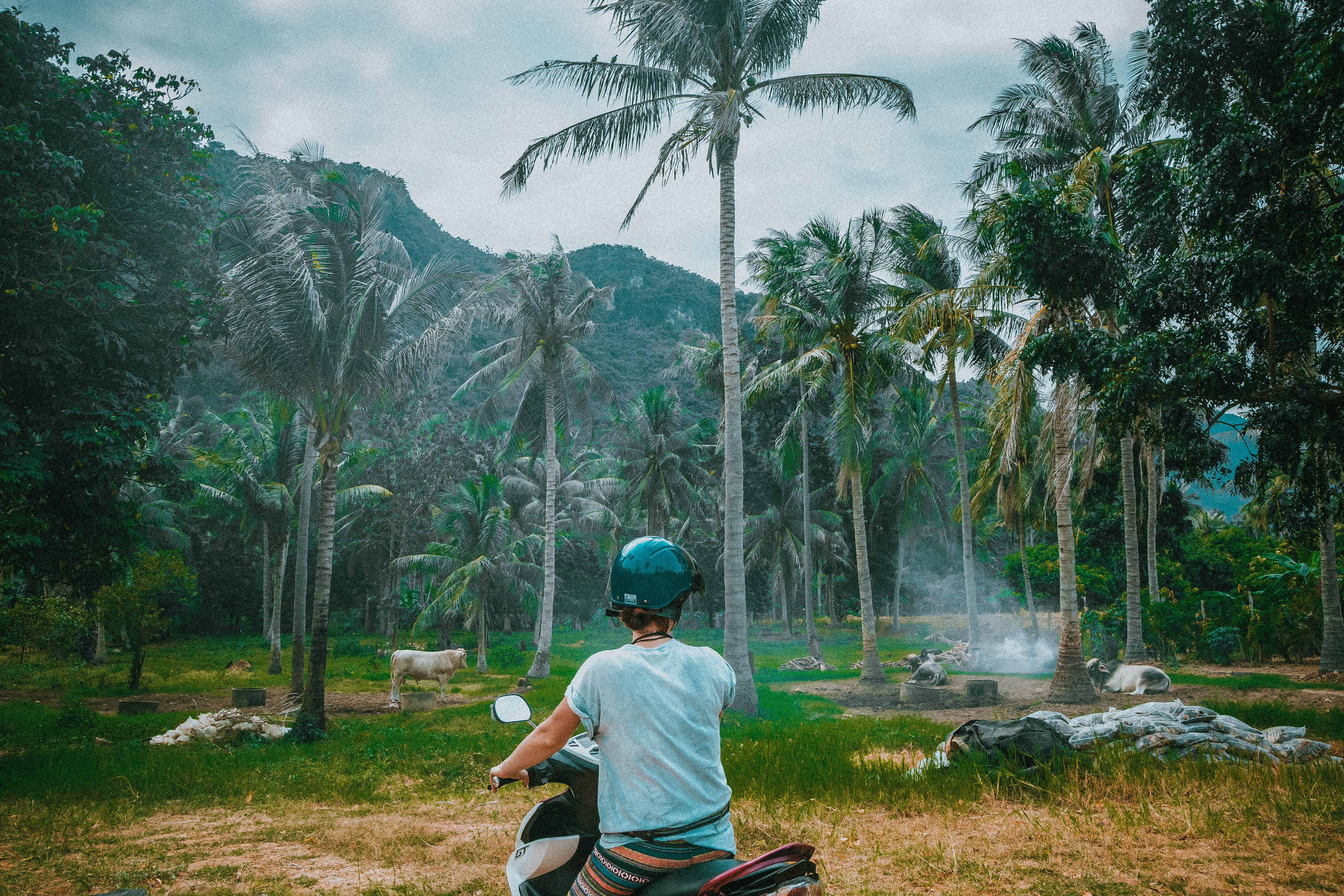 driving through hua hin spotting local villages motorcycle palms