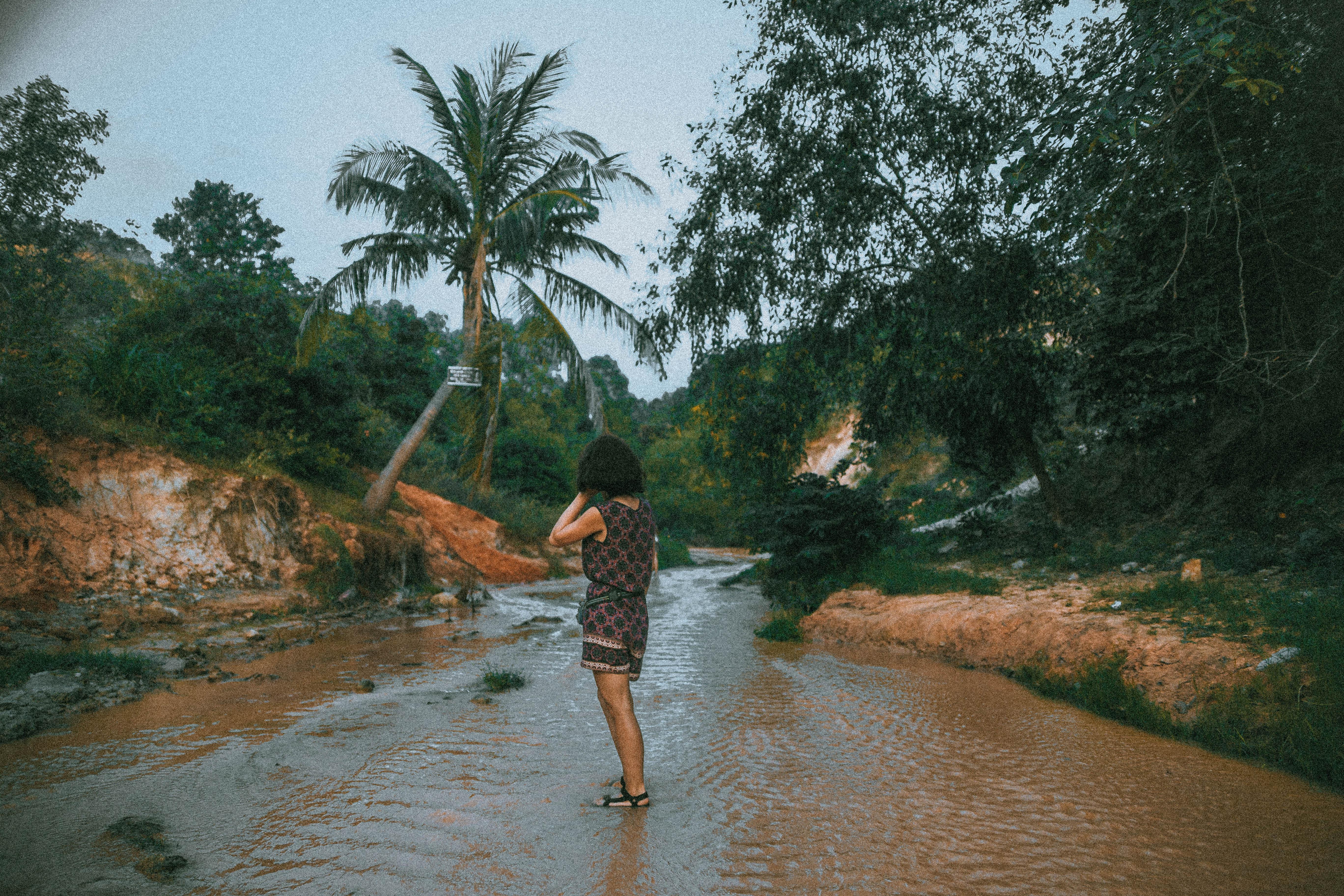 red sand dunes in vietnam pure nature south east asia mui ne fairy stream river palms
