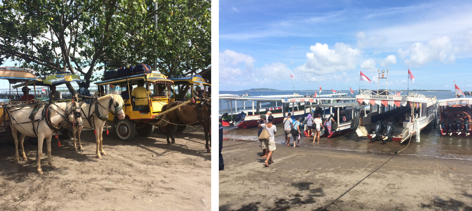 gili islands pier boat dont support animal cruelty