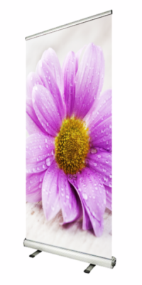 Roller banners by BigPrint. Showing a custom graphic of a flower with a custom print design