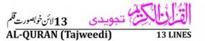 Para Set 16 Line Quran Tajweedi 4 Colors پارہ سیٹ 16 لائن قرآن تجویدی 4 کلر
