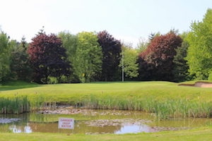 Golf Days Watford