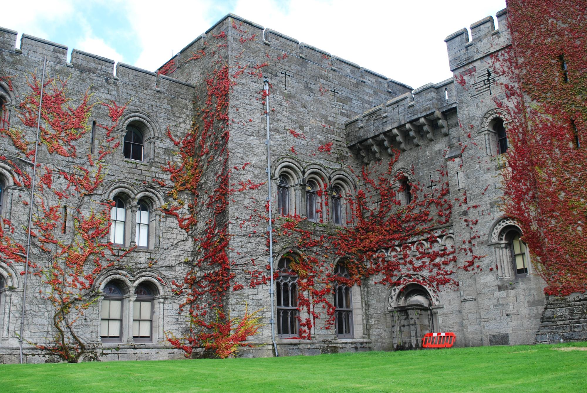 penrhyn-castle-red-leaves