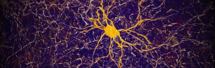 Image of the activity of a single neuron (gold) in the cortex region of the  brain.
