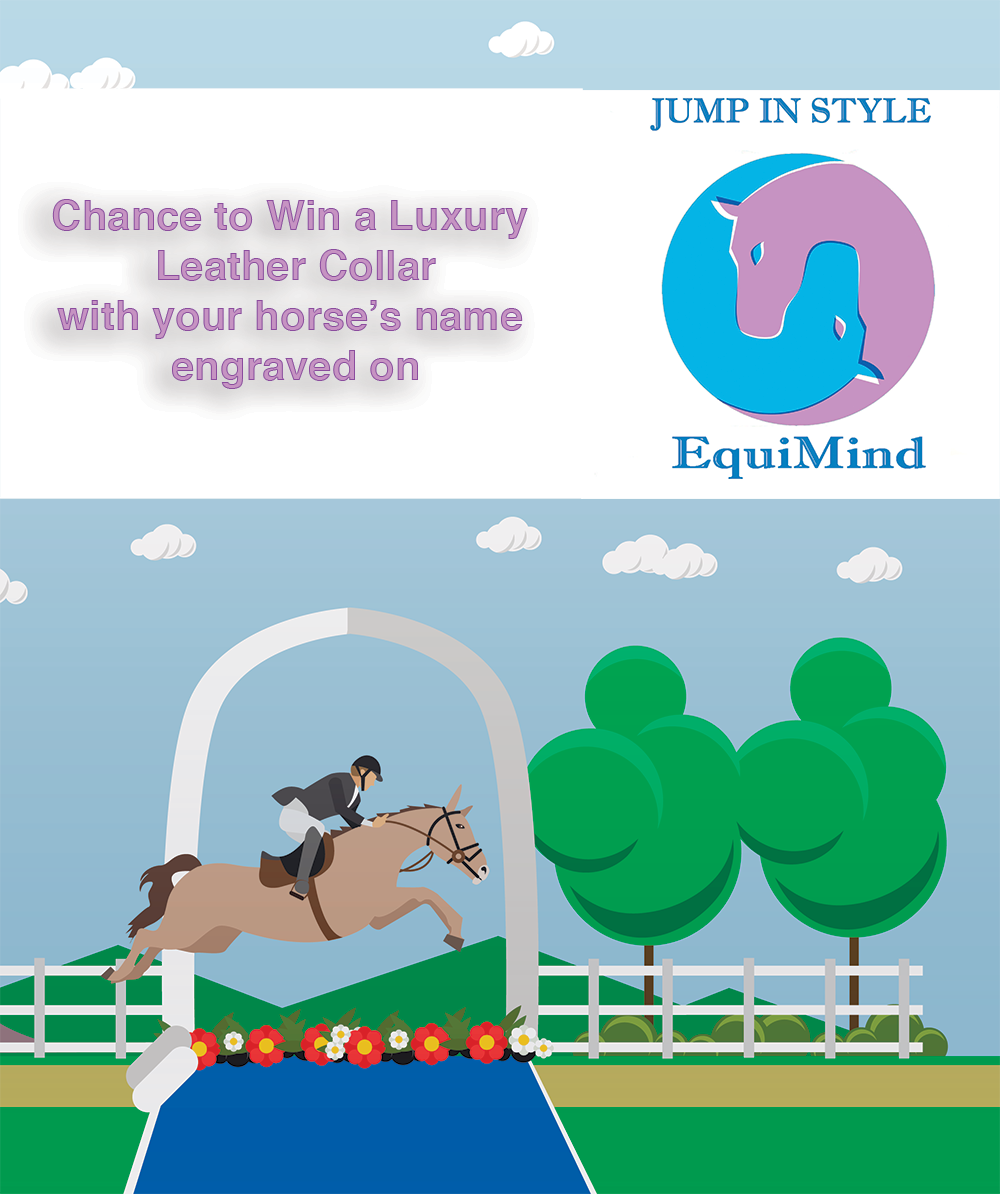 Jump In Style Competition