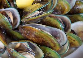 Green lipped mussel, not pretty, but packed with essential fatty acids, vitamins and minerals.