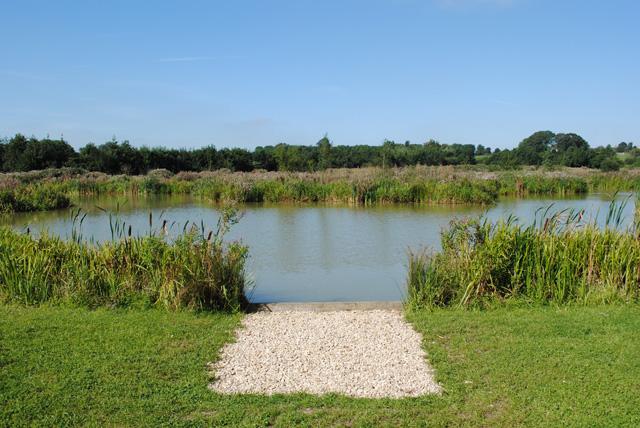 jackscorner swim view_1