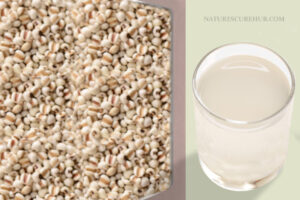 Barley water for kidney stones