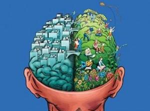 8_BrainHemispheres