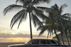 COSTA RICA LIMOUSINE PALM TREE BEACH