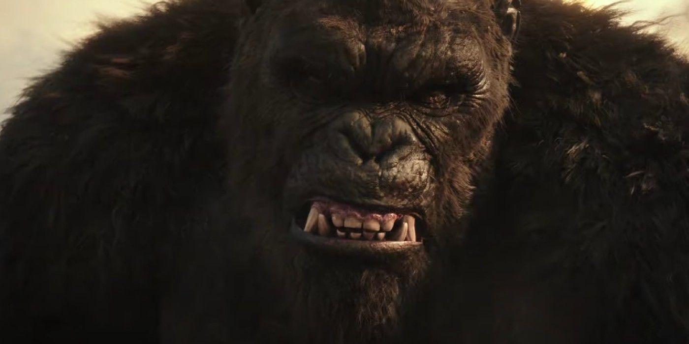 Rotten Tomatoes Godzilla vs Kong