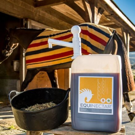 Digestive enzymes for horses to help digest starch optimally