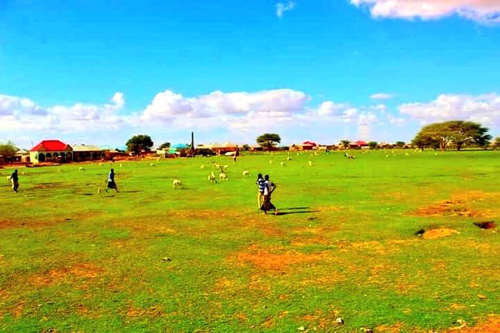 Baligubadle, Somaliland