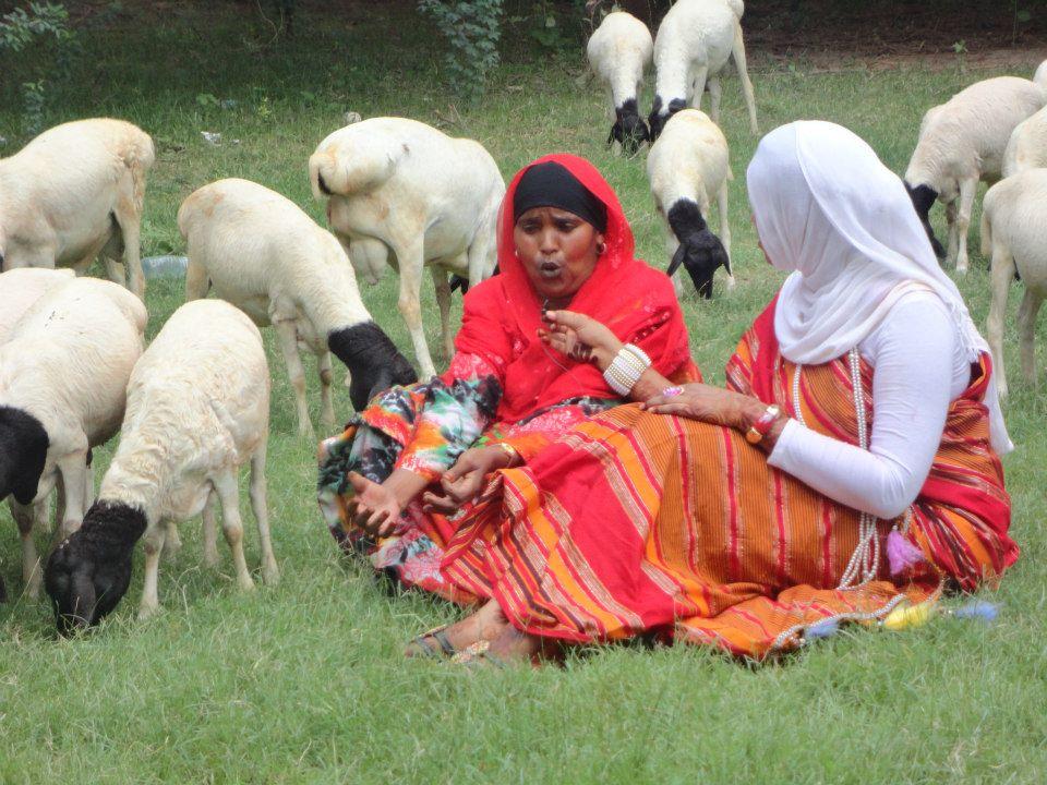 somaliland culture (2)