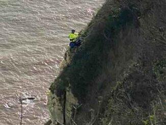 seaton cliff fall
