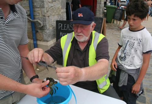 RNLI volunteer Peter Hampton judges the crab catching competition