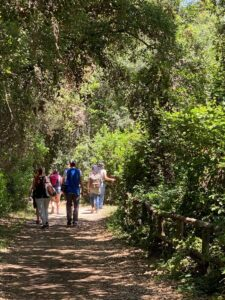 Saturday June 12th - Group Hiking Day (lago Albano/Nemi) 6