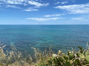 Saturday June 12th - Group Hiking Day (lago Albano/Nemi) 8
