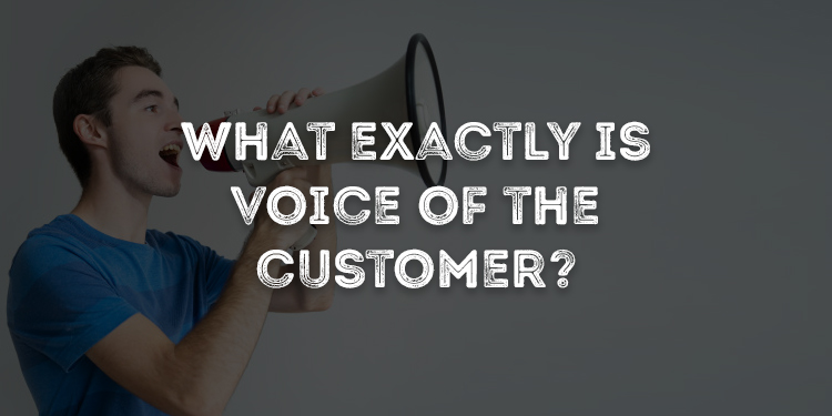 What Exactly Is Voice of the Customer?