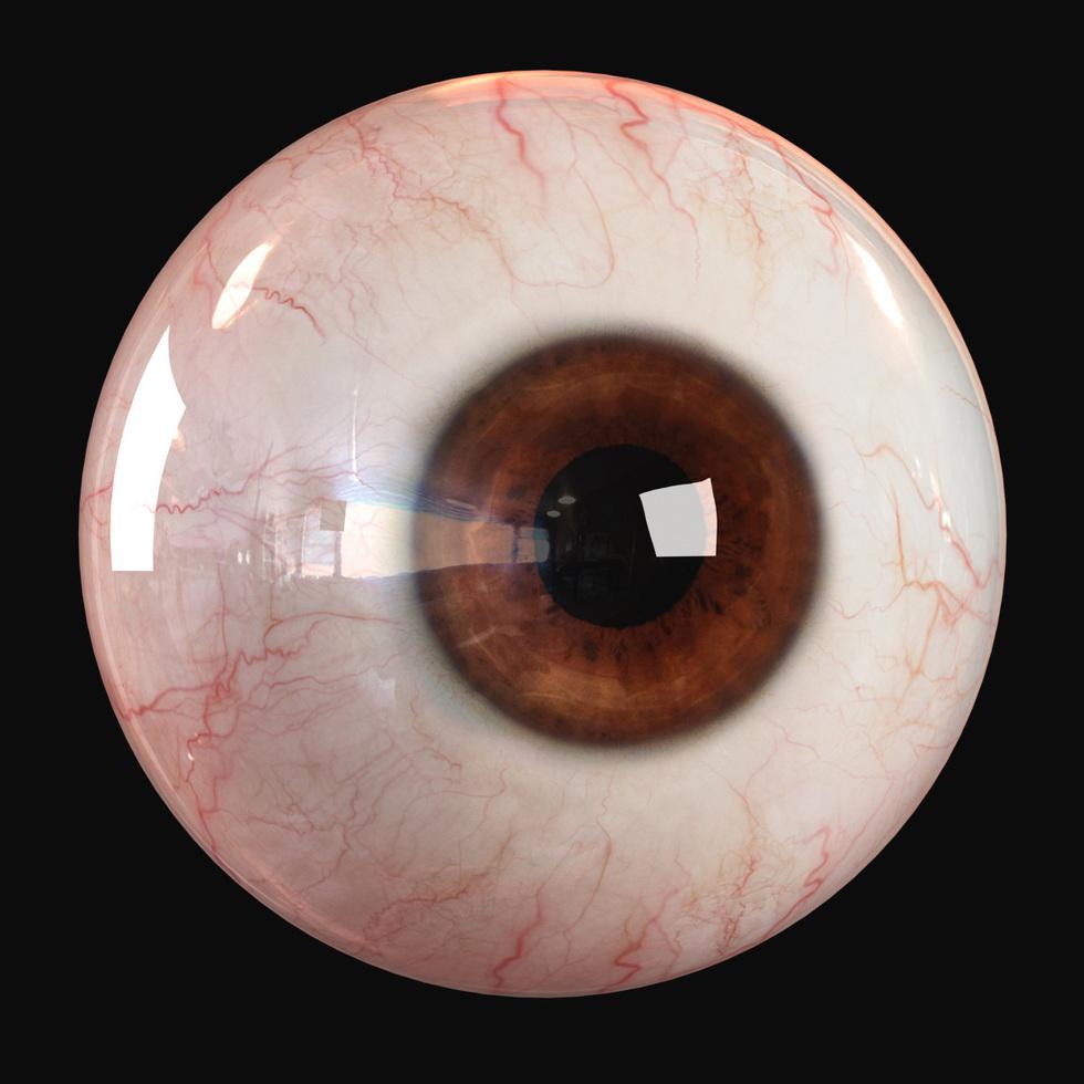 3d realistic human eyeball render, brown eye color