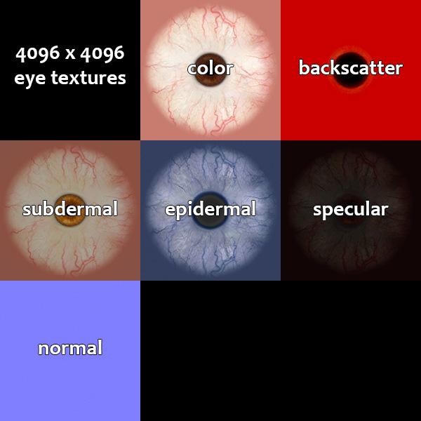 eye textures, color, backscatter, subdermal, epidermal, specular, normal